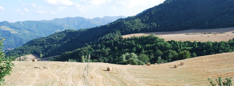 The wonderful landscapes of Mugello, a few kms away from Florence