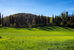 Mugello and its nature